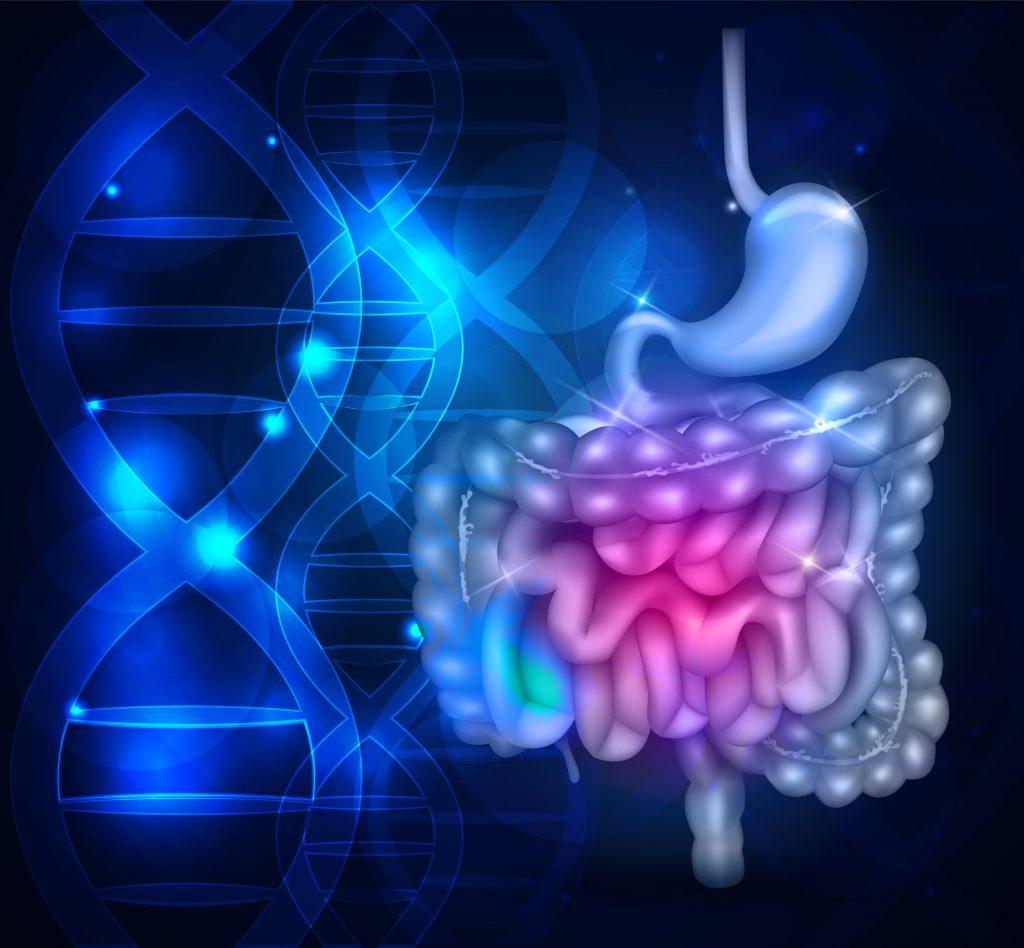 ¿Qué es el Síndrome de intestino corto?